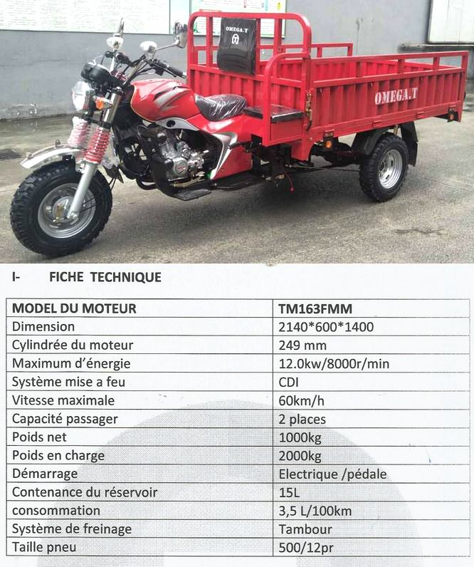 Tricycle Omega.t 250cc - OMEGA.T Sarl